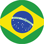 Brasilian culture foundation logo inspiration: colors of the flag of Brasil