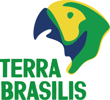 Brasilian culture foundation logo design