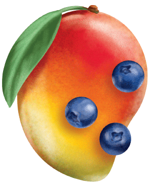 painted key visual illustration of mango and blueberry fruits for a smoothie juice label design