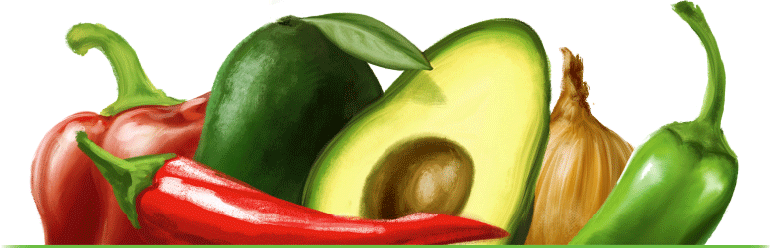 hand-painted realistic illustration of the ingredients of vegetarian avocado guacamole for the label design